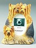 E&S Pets 35257-44 Large Dog Frames