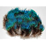 FeatherStore Peacock Plumage Feathers, Blue Hairy, 100 Pieces