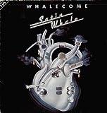 Satin Whale - Whalecome - Nova - 6.28 449