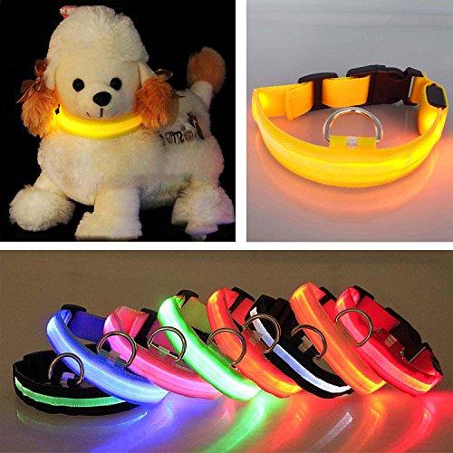 Artikelbild: AsiaLONG LED Glowing Beleuchtung Puppy Halsband USB aufladbare LED-Lichter blinkenden Pet Cat Hundehalsband Nylon Wasserdicht Nacht Sicherheit Pets Halsband für kleine mittelgroße Hunde