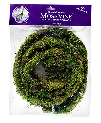 SuperMoss Basil Spanish Moss Preserved 3lbs 27011