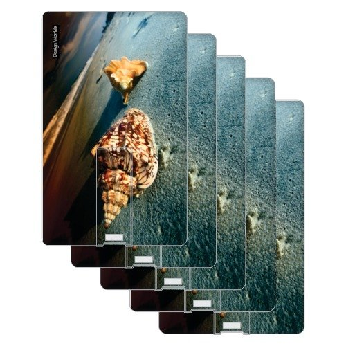Design worlds 16GB Set of 5 Shell Credit Card Shape pendrive  available at amazon for Rs.2299