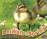 img - for Animals in Spring (All about Spring) book / textbook / text book