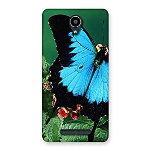 Gorgeous Butterfly on Plant Back Case Cover for Redmi Note 2