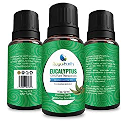 Eucalyptus Essential Oil Regal Earth - 100% Pure & Best for Health, Aromatherapy, Massage, Relaxation - 30ml