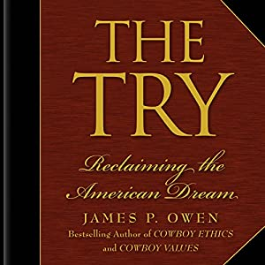 The Try Audiobook
