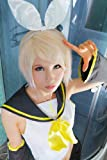 Amazon.co.jp耐熱 ウィッグ ショート サラサラでからまりにくい cos コスプレ ボブ 仮装 ウイッグ グッズ 金髪 ゴールド