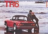 Triumph TR6 Red Classic Car Poster Print A1