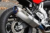 オーヴァーレーシング(OVERRACING) TT-Formula RS フルチタン フルエキゾーストマフラー チタンサイレンサー:400mm(TT-F/RS) MT-0725-50-11