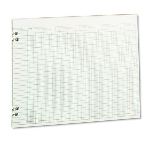 Wilson Jones - Accounting Sheets, 24 Columns, 11 X 14, 100 Loose Sheets/Pack, Green G30-24 (Dmi Pk