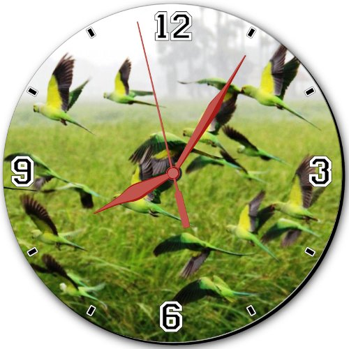 """Landscapes Nature Birds Fields Parrots 10"""" Quartz Plastic Wall Round Clock Classic Analog Setting Customized Inch Hand Needle Msd Made To Order Support Ready Dial Time Personalized Gift Battery Operated Accessories Graphic Designed Model Hd Template Wallp"""