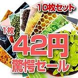 [MIJIN]◎韓国No.1 MIJINマスクパック10枚セット 82.5%OFF 10枚35円韓国コスメ◎