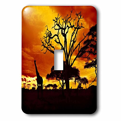3dRose lsp_173293_1 African Giraffe on African Plains At Sunset, Animal Safari Africa Light Switch Cover (African Safari Pictures compare prices)