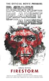 Dawn of the Planet of the Apes- Firestorm