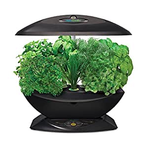 miracle gro aerogarden 7 indoor garden with