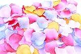 フラワーシャワー 造花 花びら 1200枚セット / ハピネス ウェディング ビューティフル パーティ 【 12バリエーションから選べます 】 (グラデーション フォー ドリームズ)