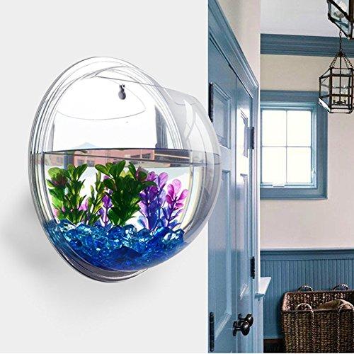 Aquarium recette d 39 aquarium marmiton for Acheter aquarium boule