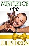 Mistletoe Mine (Holiday Hotties) (English Edition)