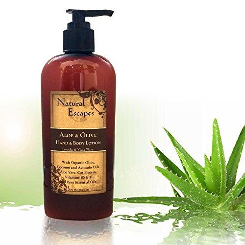 Lavande Aloe & Olive main & Body Lotion,