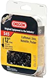 Oregon Cutting Systems S45 12-Inch Chainsaw Replacement Chain Single Pack - Prem
