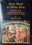 """Dark Wood to White Rose: Journey and Transformation in Dante's """"Divine Comedy"""""""