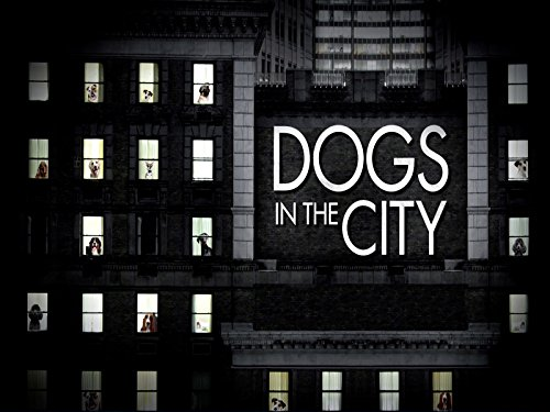 Dogs In The City Season 1