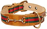Poochee Goochee Tapered Dog Collar, Large Size 14-17,Brown with Red Green Stripe