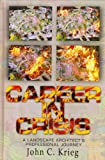 img - for Career in Crisis: A Landscape Architect's Professional Journey book / textbook / text book