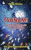 Tsunami - Zwischen Ohnmacht und Hoffnung: Ein Überlebensbericht
