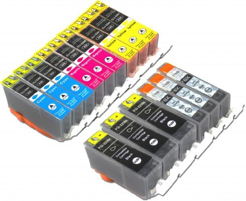 YoYoInk Compatible Ink Cartridges Replacement for Canon PGI 225 & CLI 226, 15 Pack (3 Big Black, 3 Small Black, 3 Cyan, 3 Magenta, 3 Yellow) - With Ink Level Display Indicator