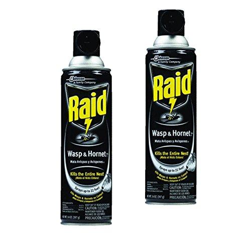 wasp-hornet-killer-14-oz-aerosol-can-pack-of-2