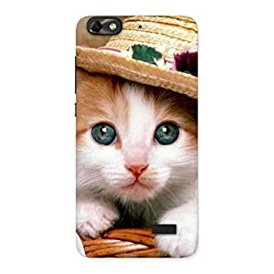 Gorgeous Premium Cute Hats Cat Multicolor Back Case Cover for Honor 4C