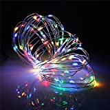 LightsEtc 5 Modes Multi Color Copper Wire Lights 32.8ft 100 LED 5V USB Copper Rope Light Dimmable String lights with Remote Controller for Christmas, Indoor, Outdoor, Garden, Holiday, Party, Decor