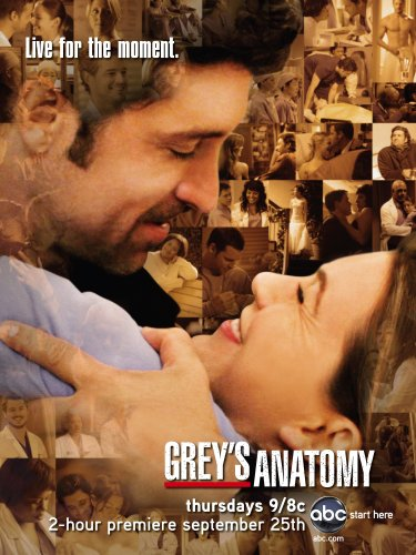Grey's Anatomy: The Complete Fifth Season [Blu-ray]