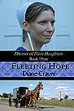 Fleeting Hope (Dreams of Plain Daughters Book 3)
