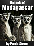 img - for Animals of Madagascar: Kids Book about the Lemur and other Madagascar Animals book / textbook / text book