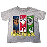Nickelodeon Paw Patrol Little Boys Short Sleeve Grey T-Shirt