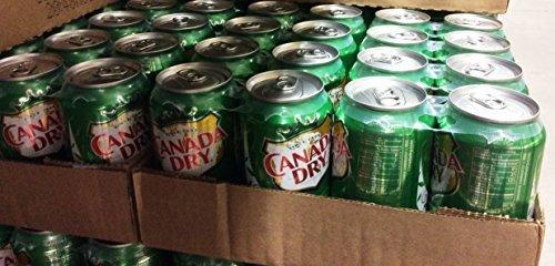 canada-dry-24-12-fl-oz-cinger-ale-288-fl-oz-by-canada-dry
