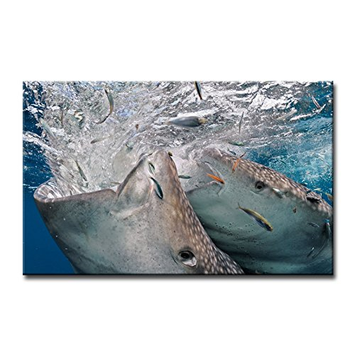 Wooden Whale Wall Art front-1054373