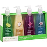 Simply Right Luxury Antibacterial Hand Soap - 8.5 oz. - 4 ct.
