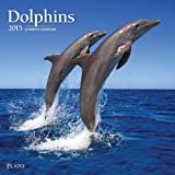 Browntrout Dolphins 2015 Wall Calendar