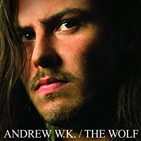 Cover image of song Never let down by Andrew W.K.