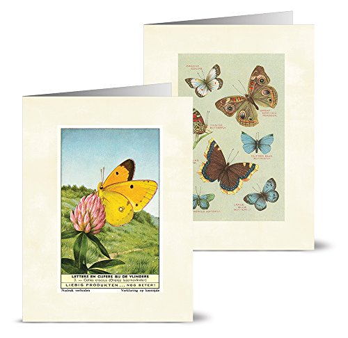 Vintage Butterflies - 36 Note Cards - 12 Designs - Blank Cards - Off-White Ivory Envelopes Included