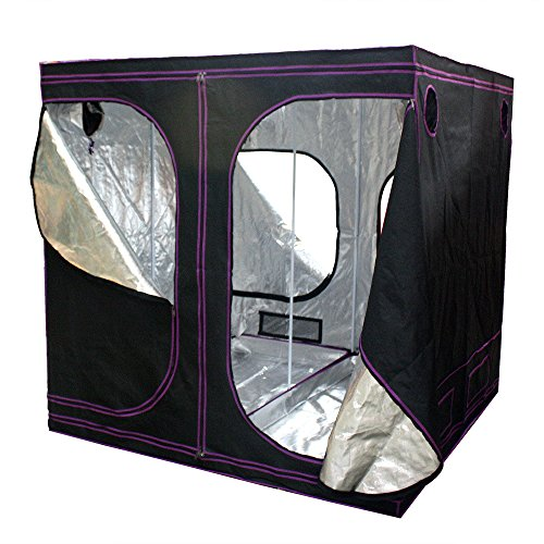 Apollo-Horticulture-77x77x77-Mylar-Hydroponic-Grow-Tent-for-Indoor-Plant-Growing