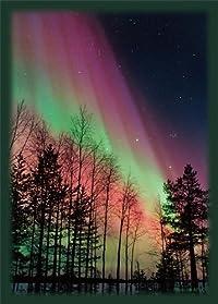 ブロッコリー ハイブリッドスリーブ 「夜空を彩るオーロラ」