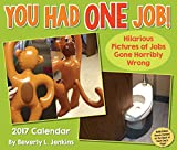img - for You Had One Job 2017 Day-to-Day Calendar book / textbook / text book
