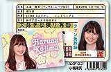AKB48ファン免許証 第3弾 小嶋陽菜 [おもちゃ&ホビー]
