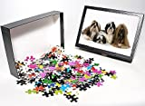 Photo Jigsaw Puzzle of Dog - Shih-tzu - ...
