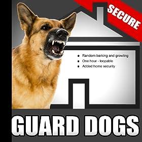 Barking Dog Sounds For Security