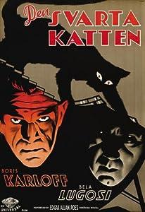 The Black Cat Poster Movie Swedish 11x17 Boris Karloff Bela Lugosi David Manners
